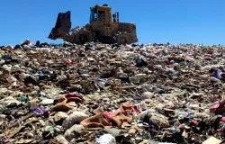 coffee pods in landfill